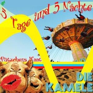 Die Kamele 歌手頭像