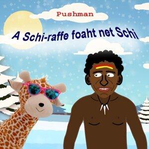 Pushman 歌手頭像