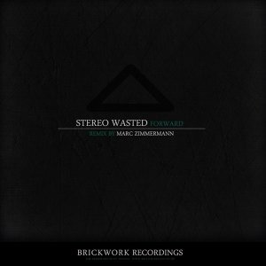 Stereo Wasted 歌手頭像