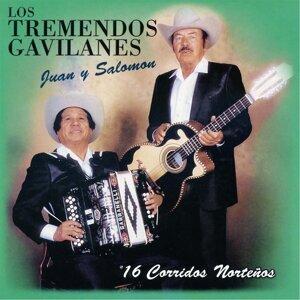 Los Tremendos Gavilanes Juan y Salomon 歌手頭像