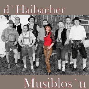 D' Haibacher Musiblos'n 歌手頭像