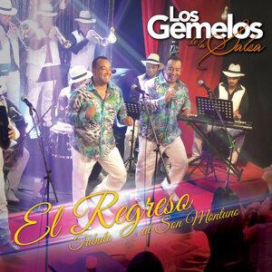 Los Gemelos De La Salsa 歌手頭像