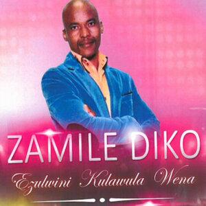 Zamile Diko 歌手頭像