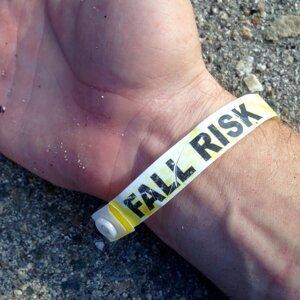 Fall Risk 歌手頭像