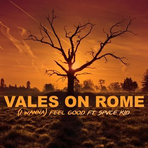 Vales on Rome 歌手頭像