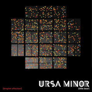 Ursa Minor (Little Bear)