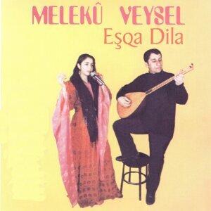 Melekû Veysel 歌手頭像