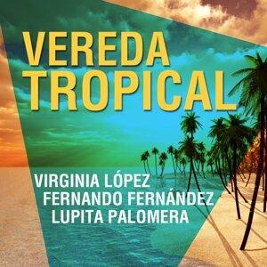 Virginia López, Fernando Fernández, Lupita Palomera 歌手頭像