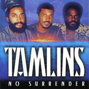 Tamlins 歌手頭像