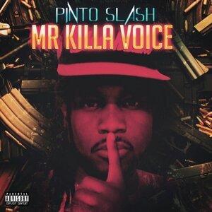 Pinto Slash 歌手頭像