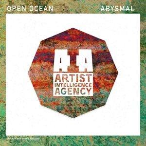 Open Ocean 歌手頭像