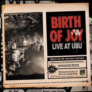 Birth Of Joy 歌手頭像