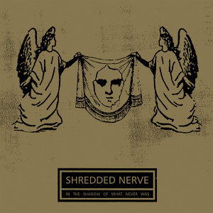 Shredded Nerve 歌手頭像