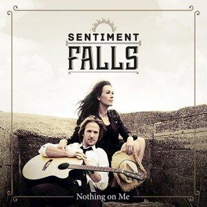Sentiment Falls 歌手頭像