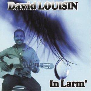David Louisin 歌手頭像