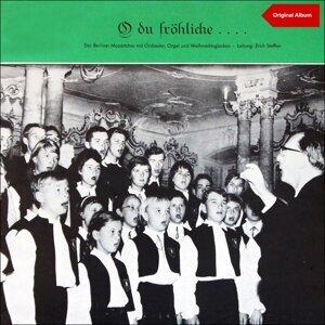 Der Berliner Mozartchor Mit Orchester 歌手頭像