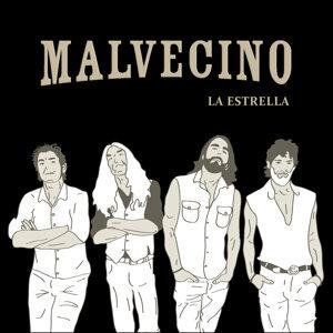 Malvecino 歌手頭像