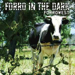 Forro In The Dark 歌手頭像