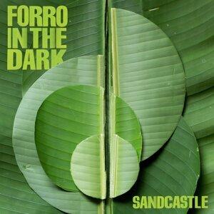 Forro In The Dark アーティスト写真