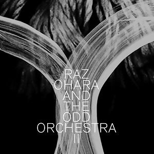 Raz Ohara And The Odd Orchestra 歌手頭像