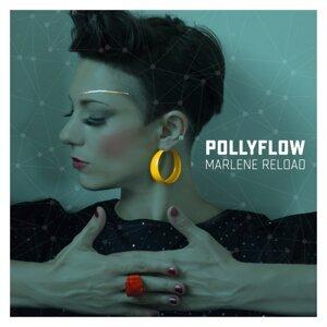 PollyFlow 歌手頭像