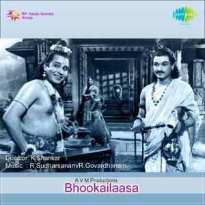 R Sudarsanam, R Govardhanam 歌手頭像
