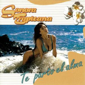 Sonora Tropicana 歌手頭像