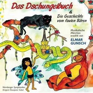 Elmar Gunsch, Nürnberger Symphoniker