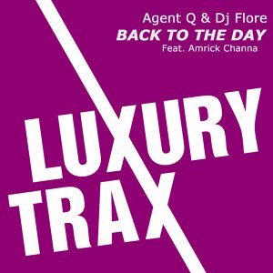 Agent Q & DJ Flore feat. Amrick Channa 歌手頭像