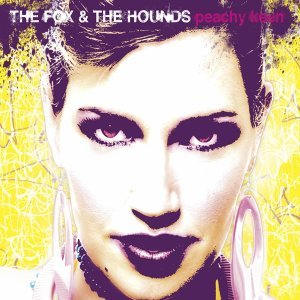 The Fox & The Hounds 歌手頭像