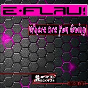DJ E-Flau 歌手頭像