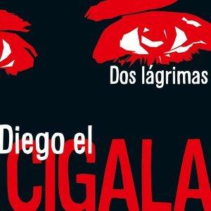 Diego El Cigala 歌手頭像