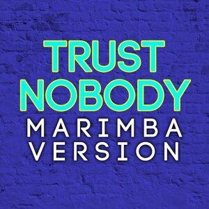 Marimba Miracles 歌手頭像