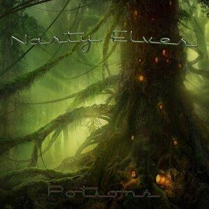 Nasty Elves 歌手頭像