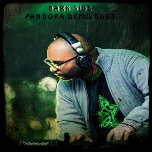 Pandora Demo Bass 歌手頭像