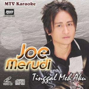 Joe Merudi 歌手頭像