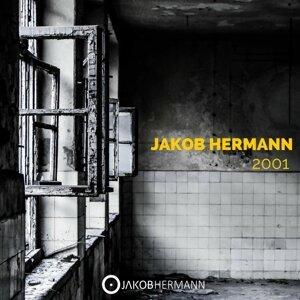 Jakob Hermann 歌手頭像
