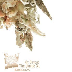 The Jungle XL 歌手頭像