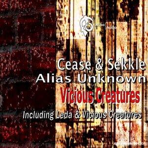 Cease, Sekkle & Alias Unknown アーティスト写真
