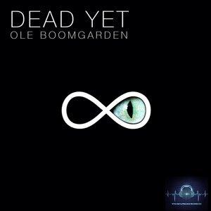 Ole Boomgarden 歌手頭像