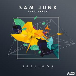 Sam Junk 歌手頭像