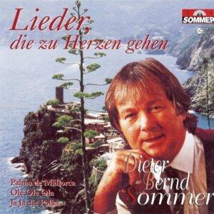 Dieter Bernd Sommer 歌手頭像