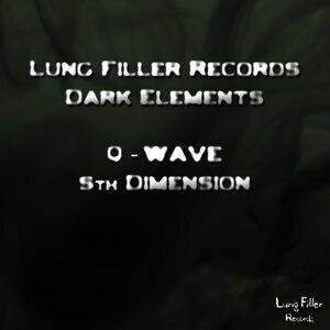 Q-Wave 歌手頭像