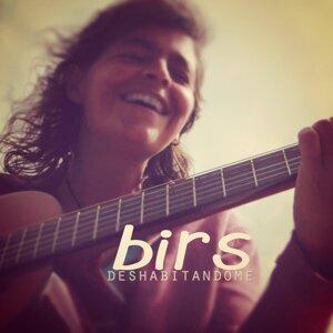 Birs 歌手頭像