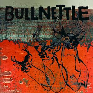 Bullnettle 歌手頭像
