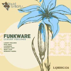 Funkware 歌手頭像