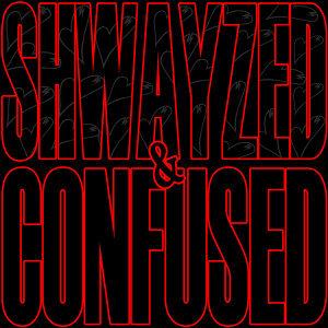 Shwayze 歌手頭像