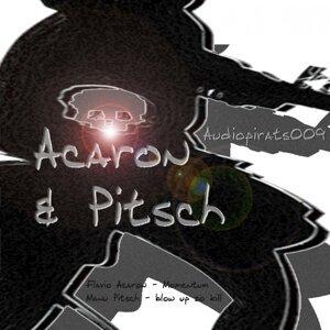 Flavio Acaron & Manuel Pisch 歌手頭像