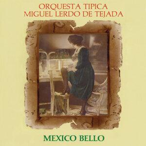 Orquesta Típica Miguel Lerdo de Tejada 歌手頭像