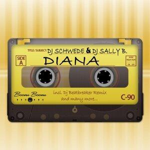 DJ Schwede & DJ Sally B. 歌手頭像